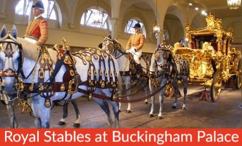 Family London Tours London Attraction Small Royal Stables