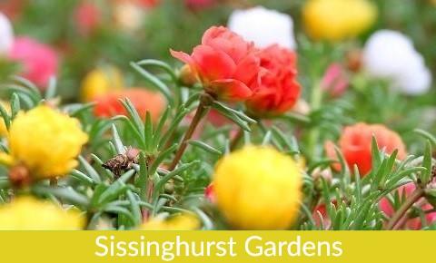 Family London Tours Specials Small Sissinghurst
