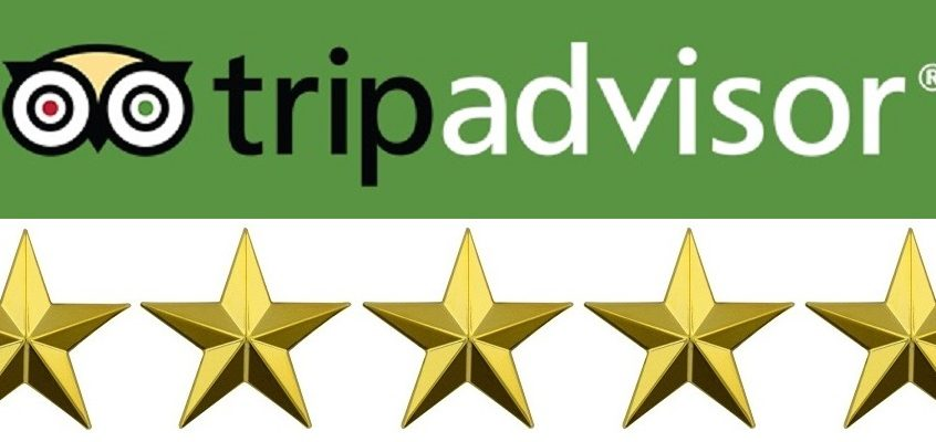 5-Star Rating for Your London Tours