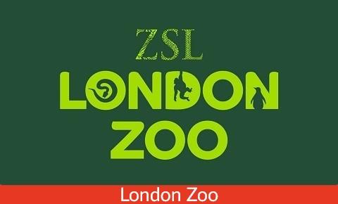 Family London Tours Zoo